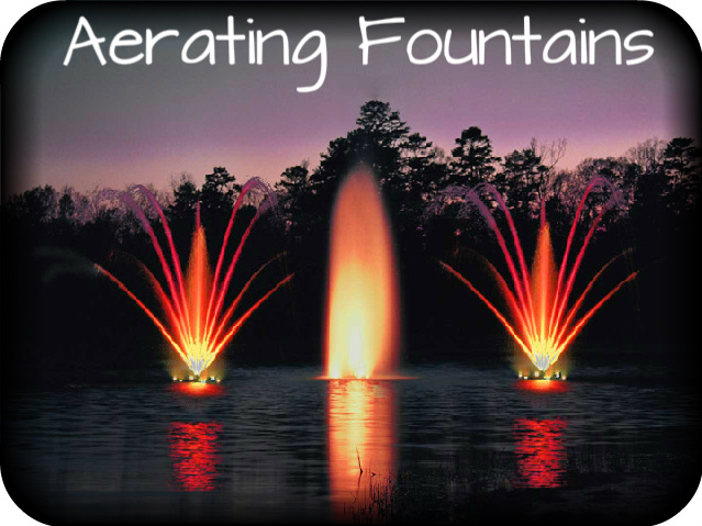 aerating-fountains-cat-pic.jpg